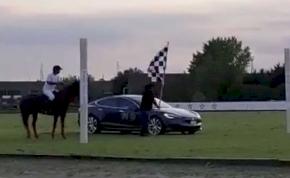 Egy ló lefutott egy Tesla S modellt – mutatjuk az őrült versenyt