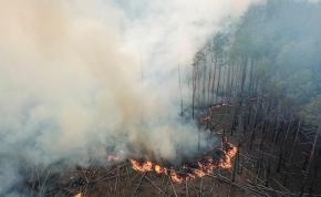 Hoax: tartanunk kell a sugárzástól a csernobili erdőtűz miatt?