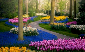 Csodálatos látvány: a világ legszebb kertje nem csak a szemedet babonázza meg – videó