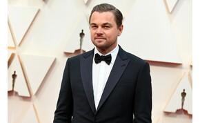 Leonardo DiCaprio a gorillák megmentésére sietett