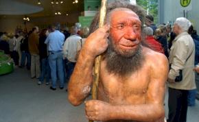 Hihetetlen, de ez okozhatta a neandervölgyi ember kihalását