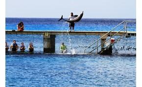 Bakancslistás tételt akarsz megélni, akkor ezt a szigetet ne hagyd ki! – galéria
