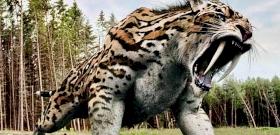 Vérfagyasztóan gigászi óriásmacskák uralták egykor a Földet