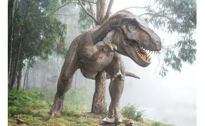 Nem az aszteroida, hanem az utána tomboló fagy irtotta ki a dinoszauruszokat