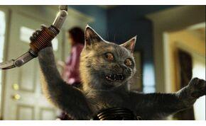 Amerika szupertitkos fegyvere egy macska volt, akit a CIA képzett ki– videó