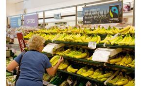 Banándráma: egy eladó hihetetlen állatot talált a gyümölcsök között