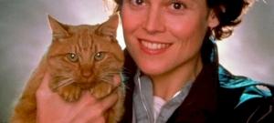 A macska, aki végignézte, ahogy gazdáját megöli egy UFO – videó