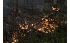 Júniusban természetellenes hőség tombolt Szibériában