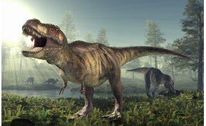 Ezek az apró, 10 centis élőlények lehettek a dinoszauruszok ősei