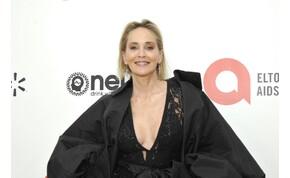 Sharon Stonenak megalázó volt levetkőzni, de kellett a karrierjéhez
