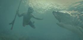 Cápák a strandon – öt hely, ahová ne utazz el, ha félsz a cápáktól