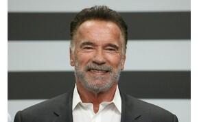 Nagyon cuki taggal bővült a Schwarzenegger-család – kép