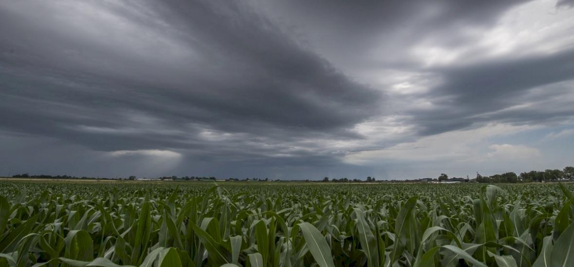 A jövő heti időjárás nem kíméli majd a frontérzékenyeket