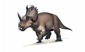 Megtalálták az első dinoszauruszt, aki rosszindulatú rákban szenvedett