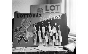 Íme néhány dolog, amit biztosan nem tudtál az ötös lottóról!