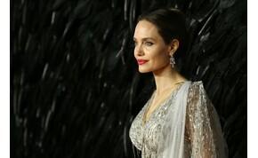 Angelina Jolie mellei anno nagyon is előtérben voltak – válogatás
