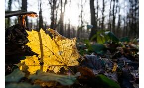 Az ősz első hétvégéje nyárias lesz – mutatjuk, mire számíthatsz