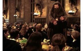 Hagrid is feltűnik a Legendás állatok folytatásában?