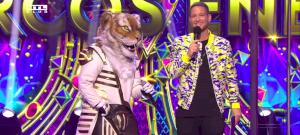 Álarcos énekes: Nagy Ervin lebuktatta a Tigrist