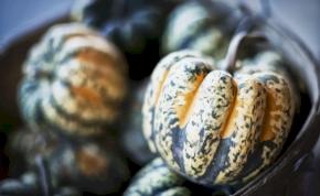 Ez az ősz legütősebb krémlevese