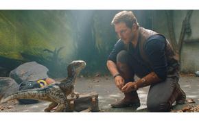 Szörnyű hírt kaptak a Jurassic World-rajongók