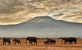 Lángokban áll Afrika legmagasabb hegye, a Kilimandzsáró – videó