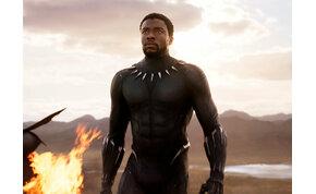 Coub-válogatás: Fekete Párduc sosem fog meghalni