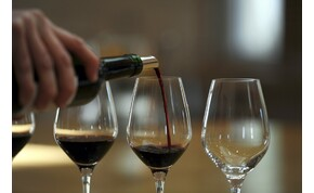 Mi történik, ha a legolcsóbb bor helyett a legdrágábbat itatják meg veled?