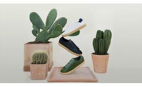 Kaktuszból készített cipőt egy amerikai márka