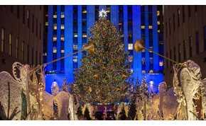 Felállították New York karácsonyfáját, majd észrevettek valamit az ágak között