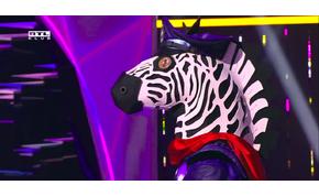 Álarcos énekes: a Zebra megtette, amit előtte még senki a műsorban