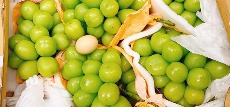 Hajmeresztő áron árulják a vietnámi óriásszőlőt
