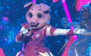 Tényleg ő az Álarcos énekes Röfije? Szavazz, és tudd meg, mások kire gondolnak!