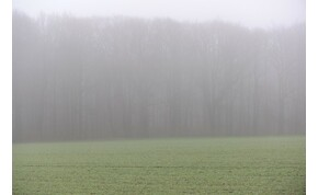 Szürke lesz ez a kedd, sajnos – időjárás-előrejelzés