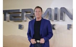 Élő közvetítésen trollkodott vejével Schwarzenegger – videó