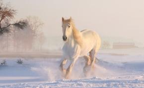 Időjárás: sokaknak hófehér vasárnapjuk lehet, mutatjuk a részleteket