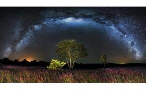 Napi horoszkóp: lehet, hogy szembe kell menned a rutinoddal