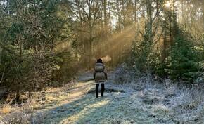 """""""Kellemesen"""" hideg lesz pénteken – időjárás-előrejelzés"""