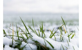 A borzasztóan hideg hétfő után milyen lesz a kedd? – időjárás