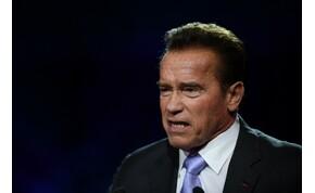 Arnold Schwarzenegger zabigyereke pont úgy néz ki, mint ő – fotók