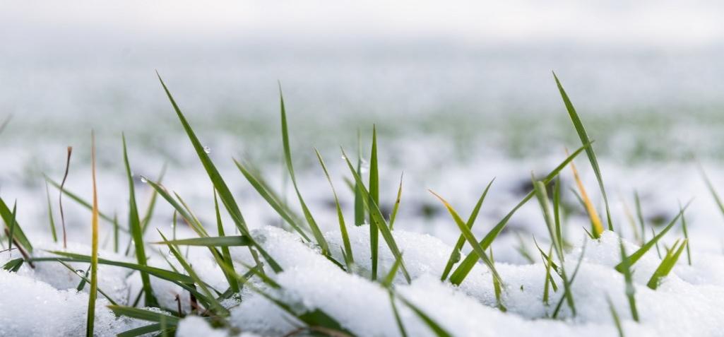 Visszatér a tél, nagyon hideg jön