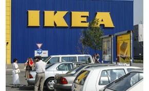 Vett egy erdőt az IKEA, azért, hogy megakadályozza a terület beépítését