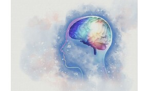 Hogyan működik az agy, ha veszélyt érzékelünk?