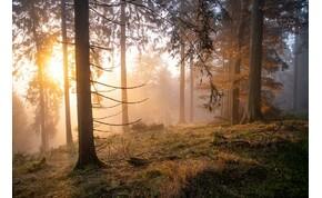 A már-már tavaszias meleg marad, de a napocska eltűnik