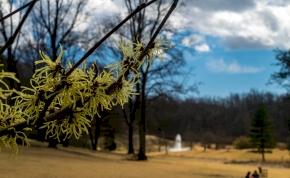 Nyakunkon a tavasz: 19 fok is lehet szerdán
