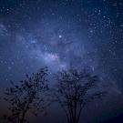 Napi horoszkóp: most nagyon körül tud ölelni a szellemi fáradtság