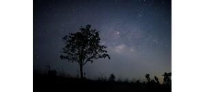 Heti horoszkóp: új hét, új hónap, új lehetőségek