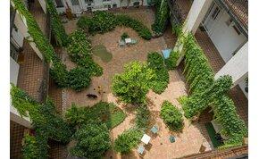 Csodálatos belső kertet alakítottak ki a lakók ebben a zuglói bérházban -fotók