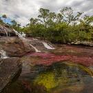Íme a világ egyik legkülönlegesebb folyója - videó