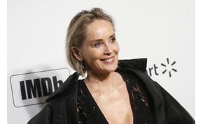 63 éves lett a szexi Sharon Stone - most összeszedtük a 10 legjobb alakítását